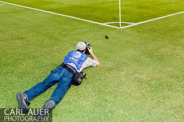 June 15th, 2013 - USA Today contributing photographer Ron Chenoy photographs a juvenile bird next to the pitch prior to the start of the MLS match between San Jose Earthquake and the Colorado Rapids at Dick's Sporting Goods Park in Commerce City, CO